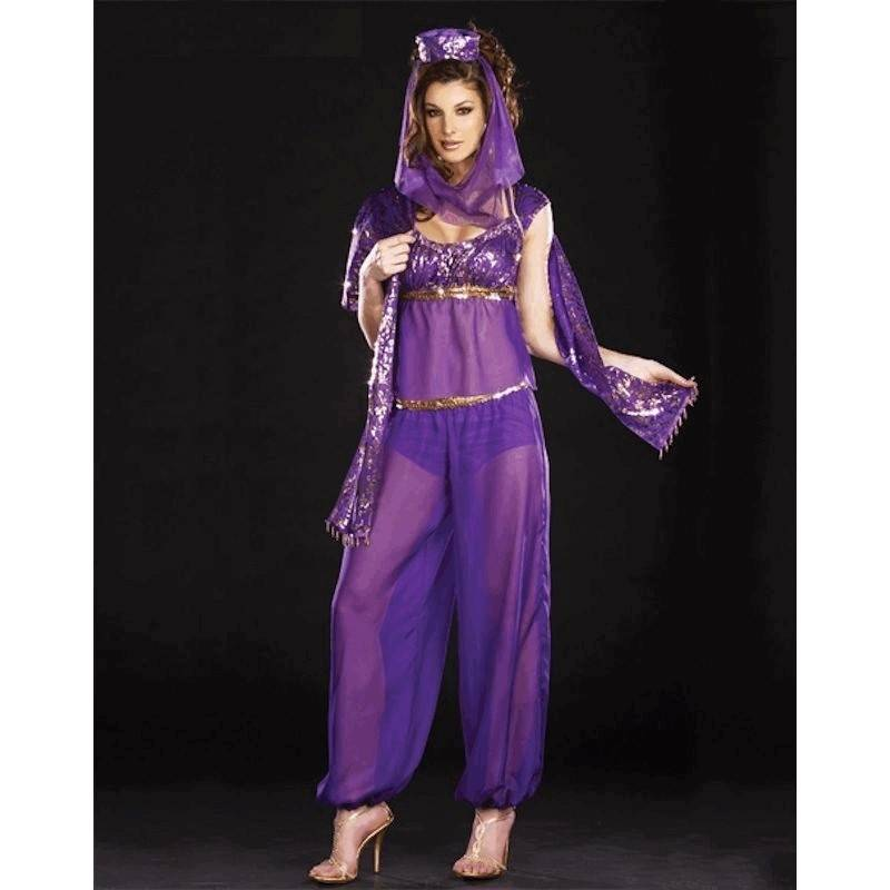 Costume Fantastic Genie Dreams or Harem Girl in Size XL